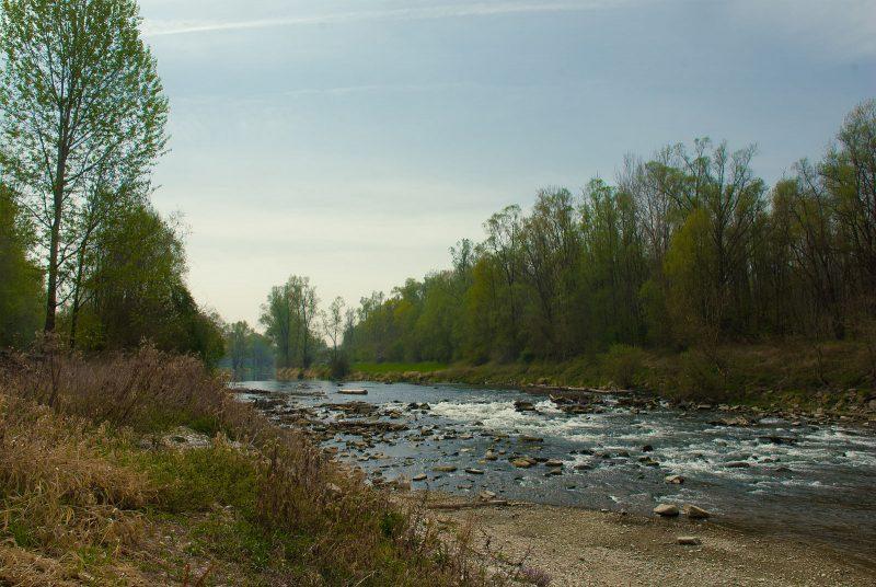 An der Donau bei Wilhering